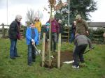 Image: Edith Cole Park Tree Planting